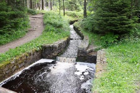 Harzer-Hexen-Stieg, 2017, Wanderung,